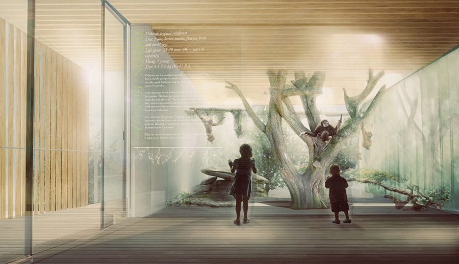 Within the tree canopy, platforms and walkways allow visitors to view primates.