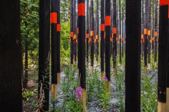 afterburn by civilian projects, 2014, photo by louise tanguay, Jardins de métis/reford gardens