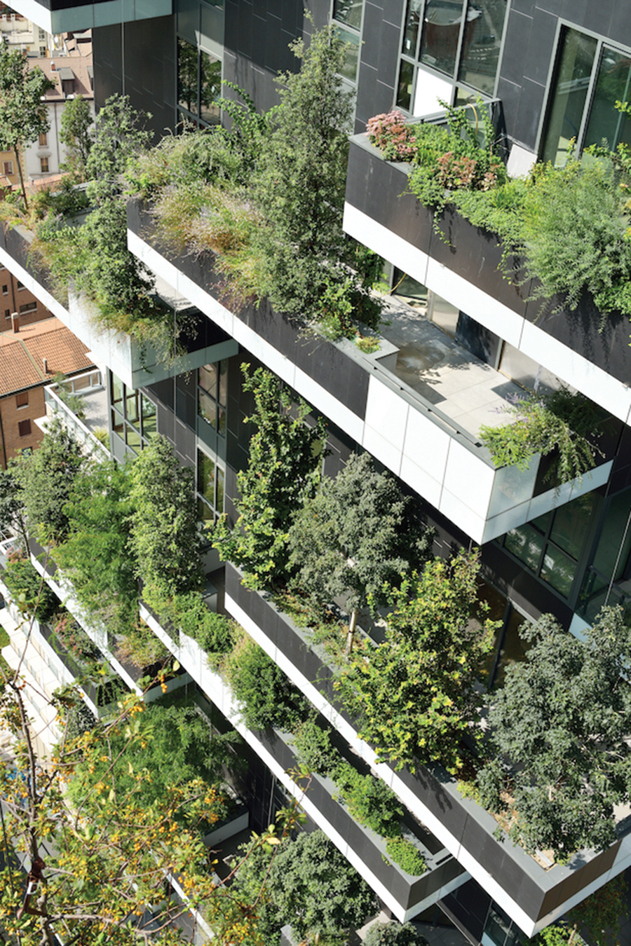 Stefano Boeri's Bosco Verticale creates a high-rise forest in Milan. Photo by Paolo Rosselli