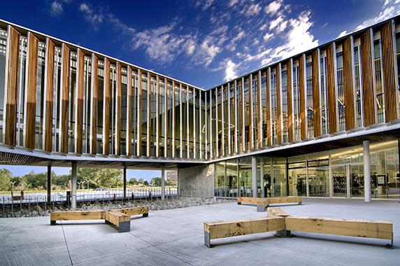 Bibliothèque Raymond-Lévesque, Manon Asselin / Jodoin Lamarre Pratte Architectes © Julien Perron-Gagné