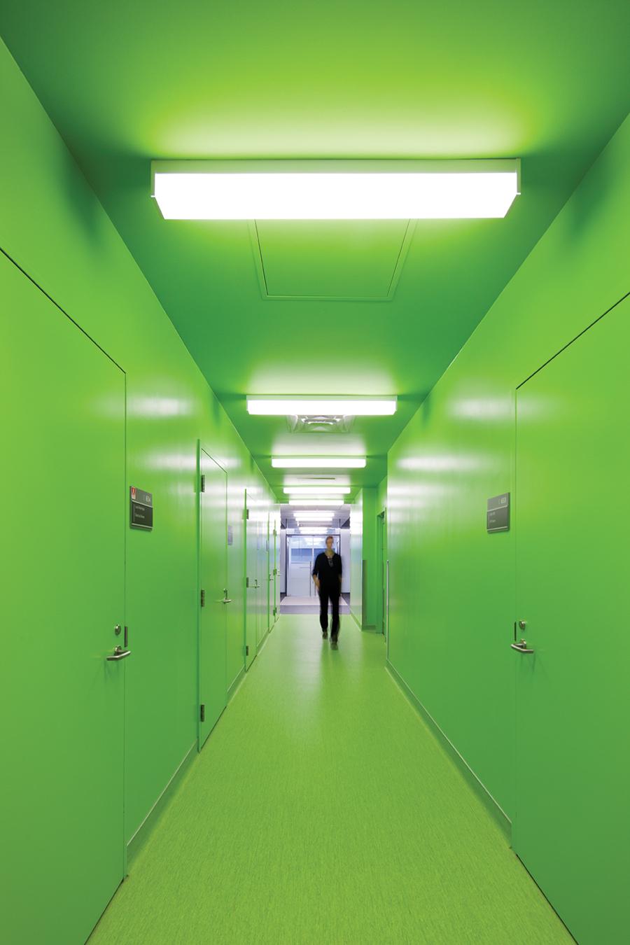 A bright green corridor enlivens the Dubrovsky Molecular Pathology Centre.