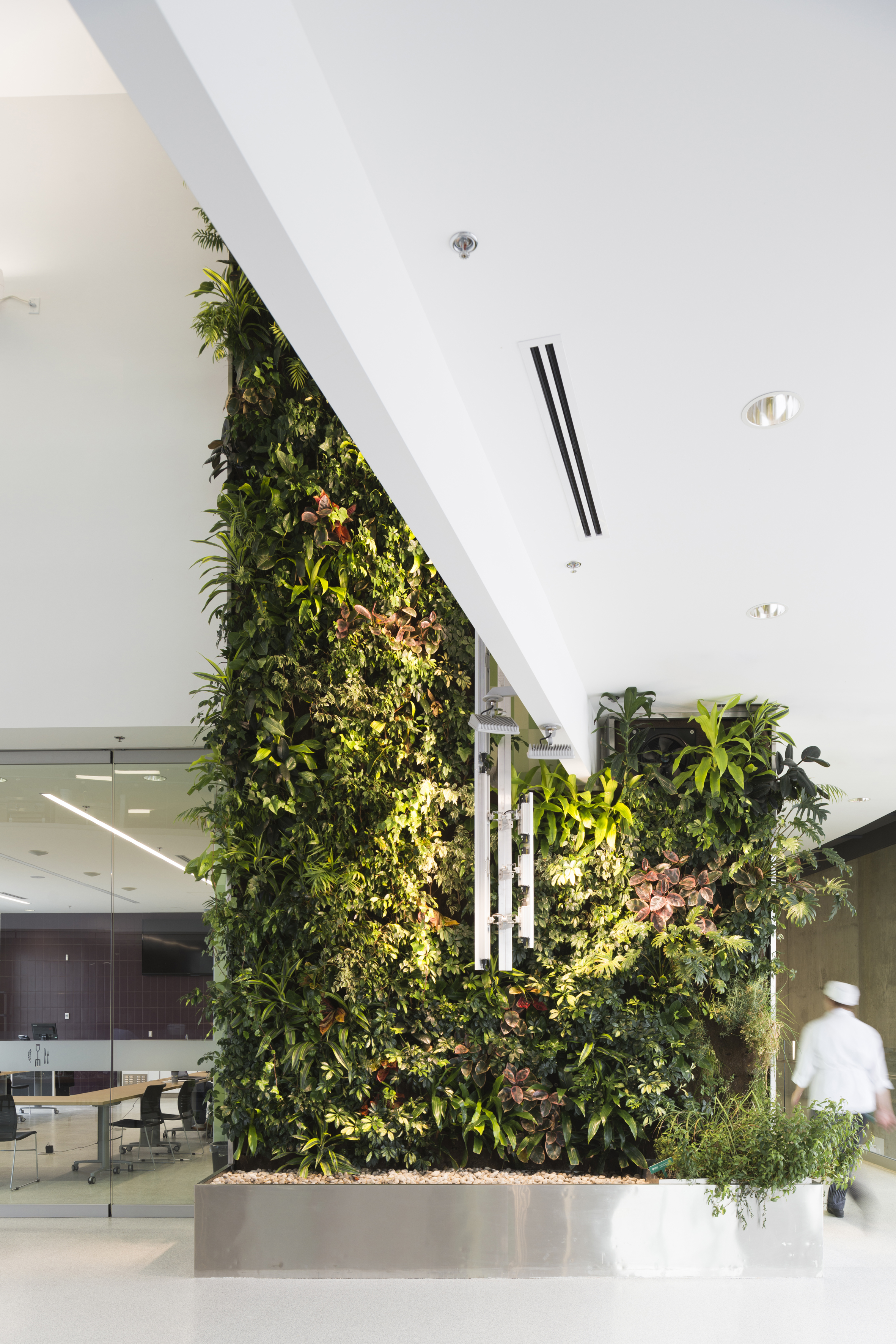 A living wall brings greenery to the main lobby.