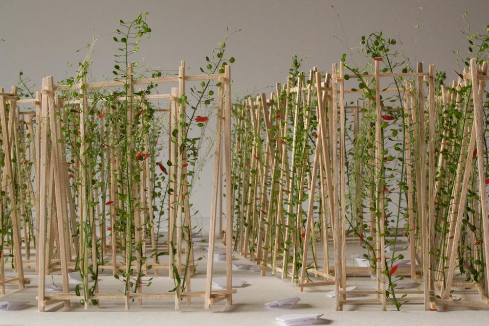 LA MAISON DE JACQUES by Romy Brosseau, Rosemarie Faille-Faubert, Émilie Gagné-Loranger, intern architects Québec (Québec) Canada