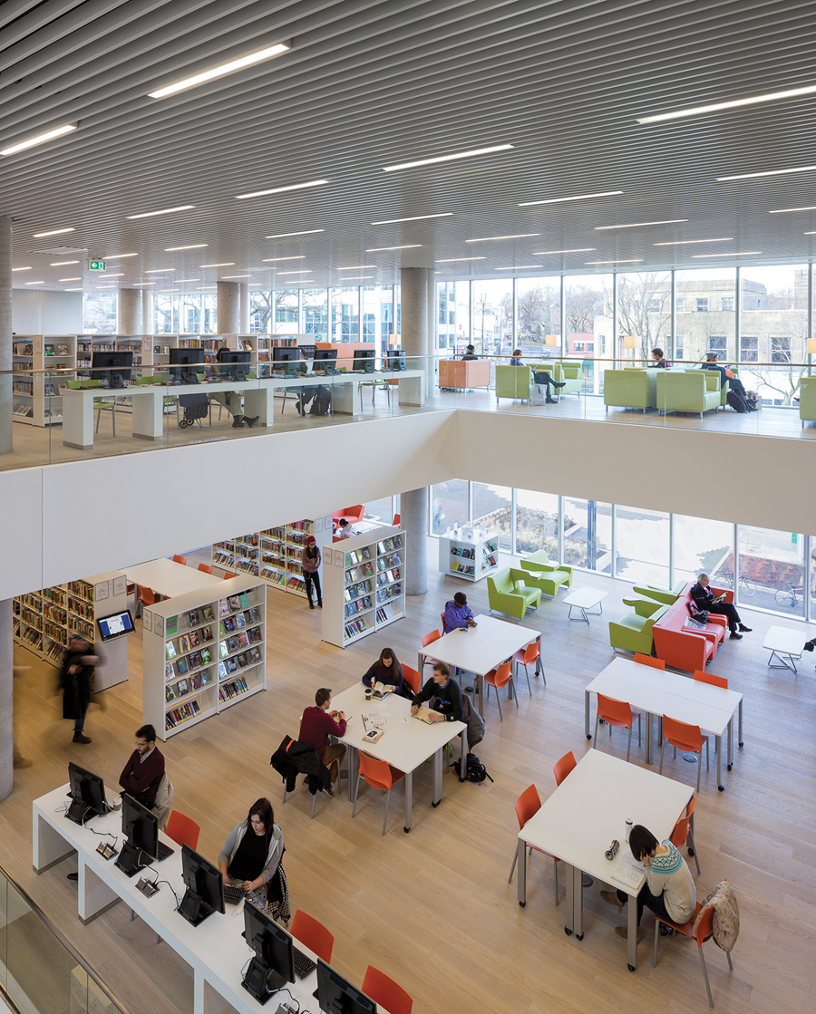 Daylight, natural materials, and clear sight lines contribute to the library's sense of spaciousness.