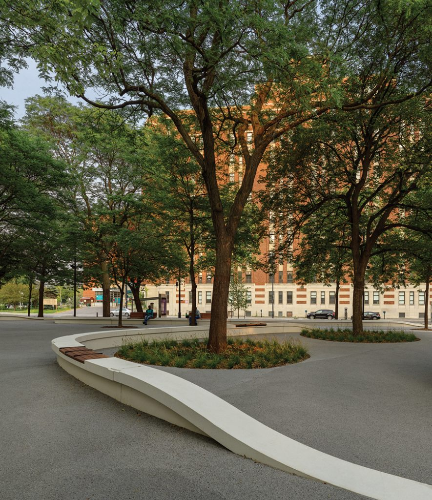Curving concrete benches create a soft barrier between pedestrian spaces and planted areas.